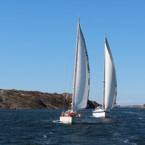 Förarintyg båt Göteborg